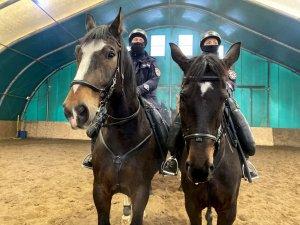 2 policjantów siedzi na koniach służbowych pozują do zdjęcia z bliska